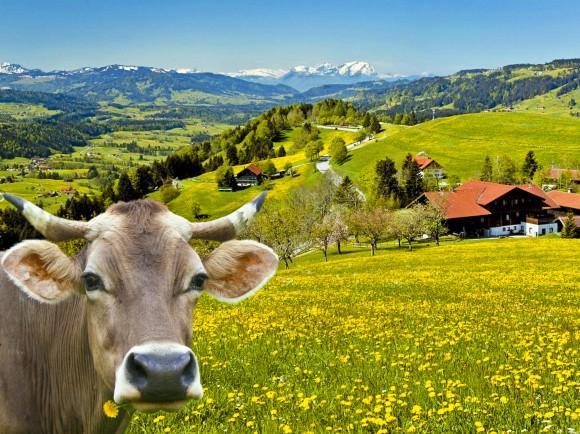 Blick von Oberstaufen über das Paradies Richtung Österreich und Schweiz